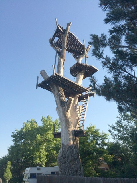dangerous looking 4 story boulder tree house