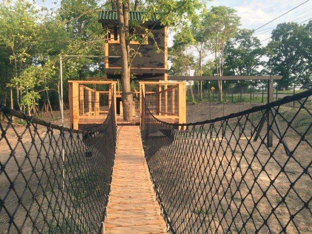 aaron smith tree house