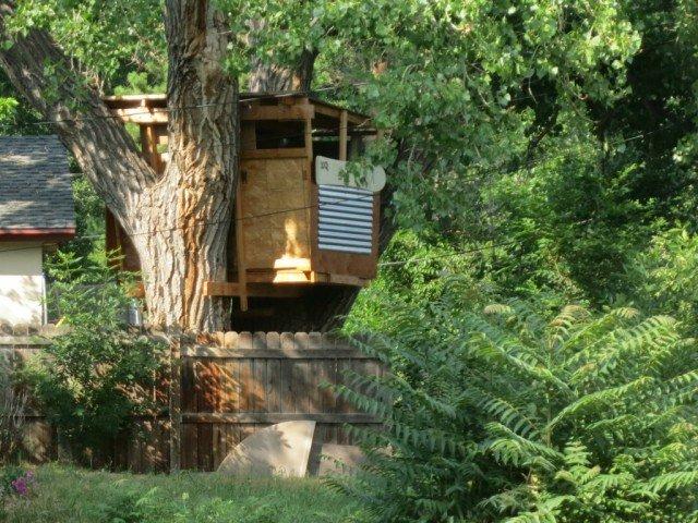 boulder tree house