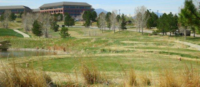 golf course at Omni Resort