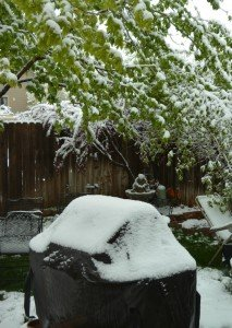 grill covered with spring snow on May 12 2014