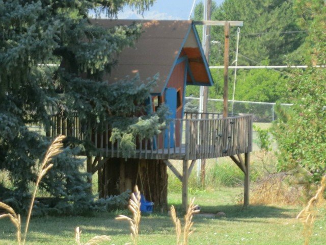 tree house in boulder spanish hills