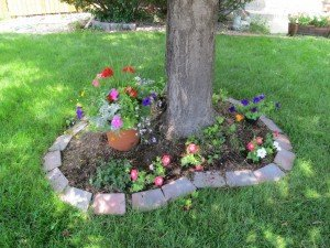 flowers around a tree is great landscapig tricks and tips suggestion