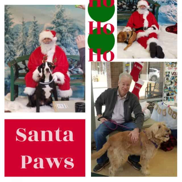 realtor bob gordon and a dog and santa claus with dogs at the louisville family animal hospital