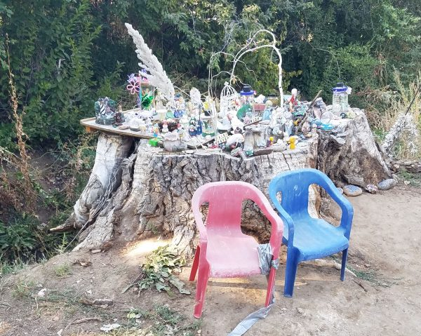 house fairy tree stump near wanaka lake filled with memorabilia such as the word wish and numerous little fairies and statues and whatnot